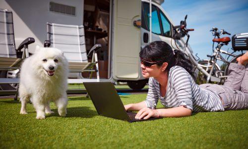 weefree professionele wifi voor campings